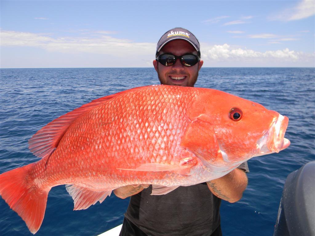 Fishing charters st simons island 23 georgia sport for Ga fishing charters