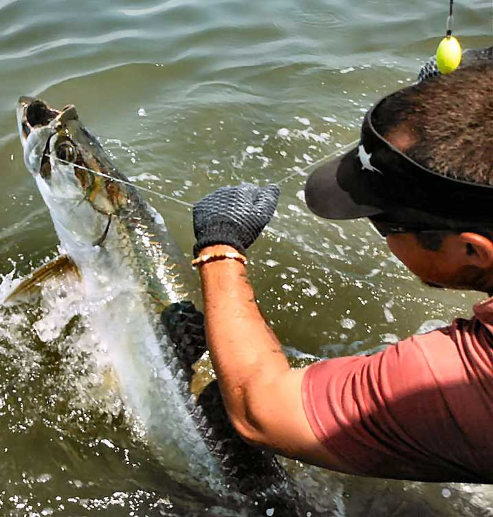 Tarpon Fishing with Georgia Sport Fishing Charters