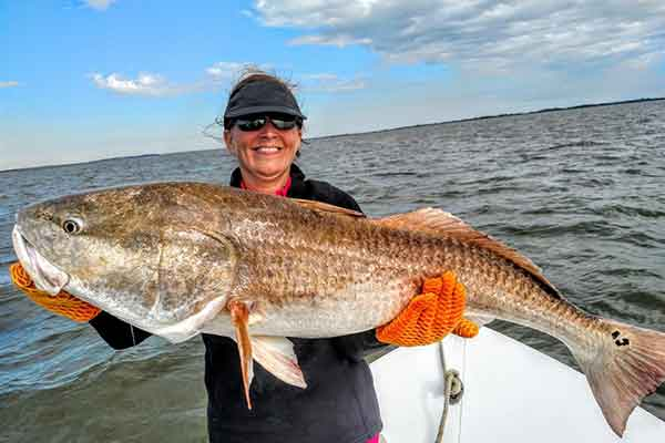 Georgia saltwater Fishing Charters - Bull Redfish