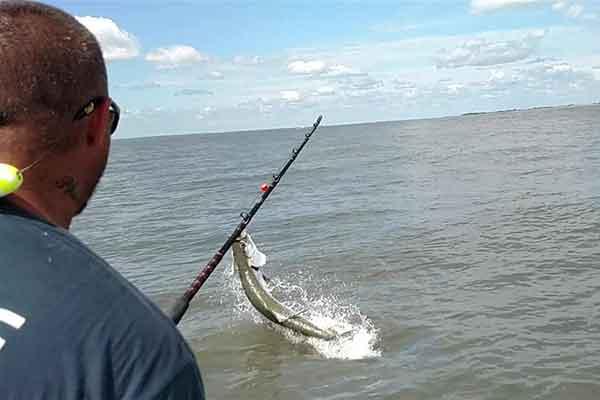 Jekyll Island Georgia Fishing Report - Tarpon Fishing around Jekyll Island Georgia