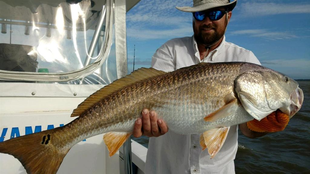 St. Simons Fishing Charters with Georgia Sport Fishing