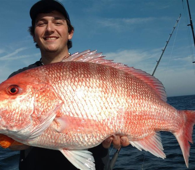 georgia fishing red snapper