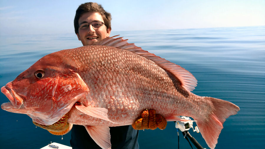 Jekyll Island Fishing Charters Deep Sea Fishing for Red Snapper